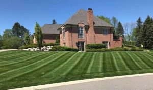 Using One Company to Service All of Your Lawn Maintenance